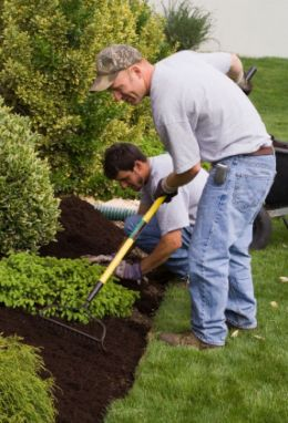 Garden Maintenance Carlow, Co Carlow, Wexford, Kilkenny, Wicklow, Country Lane Landscaping